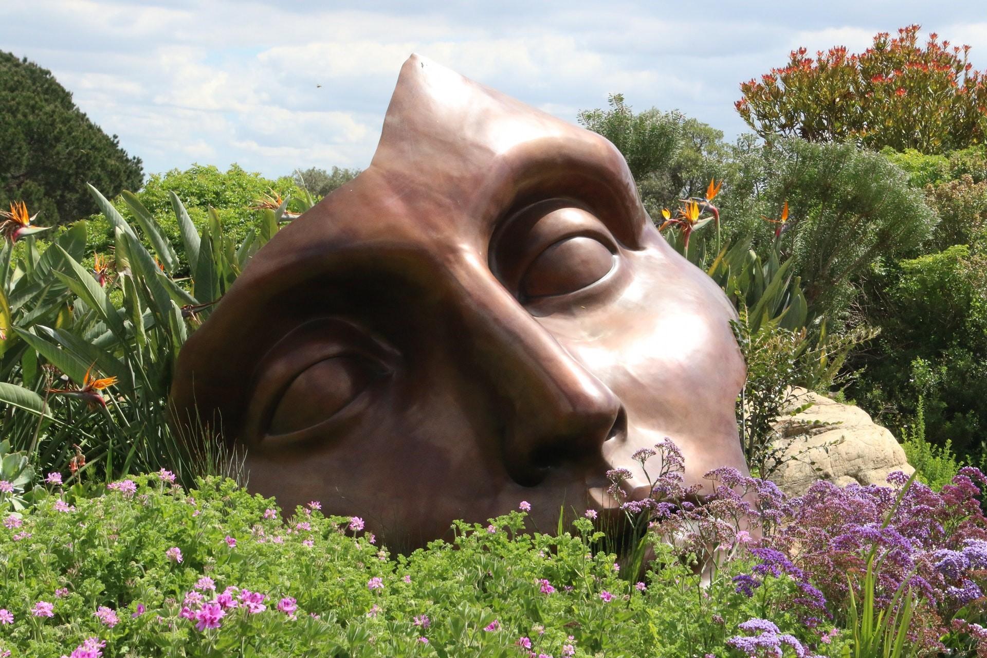 Bild eines Bronzekopfes