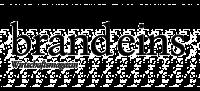 brandeins-logo